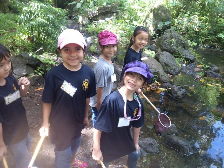First+graders+Emilie+Cosseboom%2C+Sophia+Martinez%2C+Ellen+Ha%2C+Kira+Chu-Maxson+and+Keilani+Anderson+learned+about+plant+cycles+and+insect+habits+on+a+field+trip+to+the+Hawaii+Nature+Center.+