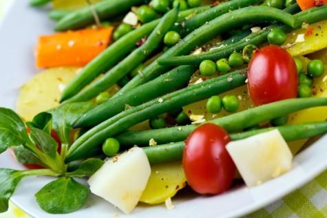 Debates over vegan diets continue