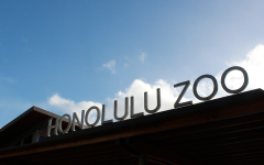 Loss of accreditation demands reliable funding for Honolulu Zoo