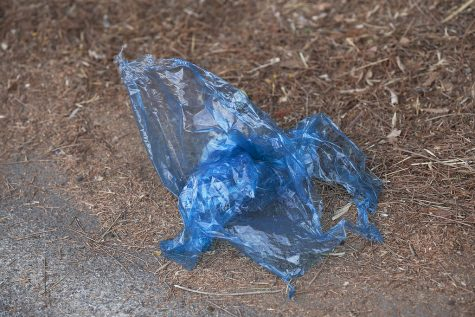 Oahu's two-year-old plastic bag ban: Is it working?