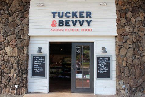 Healthy, happy picnic options at Tucker & Bevvy
