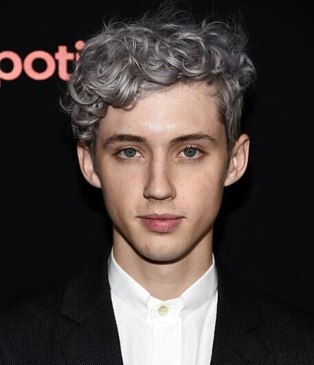 Artist Troye Sivan surprises audience with a new look and sound in his new single,