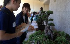 Academy students learn about Japanese culture at an annual festival