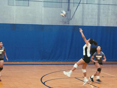 Varsity volleyball team fight to win Division II championships